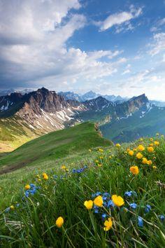 Schochenspitze Tannheimer. Switzerland