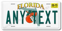 """Florida ANY TEXT Your Personalized Text Aluminum Vanity License Plate Tag 6""""x12"""""""