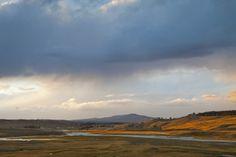 Hayden Valley, Montana, USA