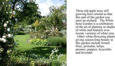 ideal location. Groombridge's White Rose Garden in Kent, England.
