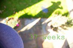37 Weeks Pregnant, parent blog, mummy blog, pregnancy diary/journal/log, bump pics, maternity photography, pregnancy week by week, bump pic, baby bump, term, pregnancy selfie, self portrait, canon 5d mark iii, sigma lens, 50mm 1.2 canon