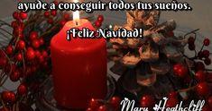 Sé que este año he estado muy ausente pero no quiero dejar pasar la fecha sin desear una muy Feliz Navidad a todas las personas que todavía me recuerdan. Les envío un abrazo gigantesco pidiendo lo mejor para ustedes en esta Navidad. Besos.