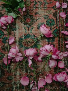 Old Persian carpet strewn with rose petals, by Kate Headley