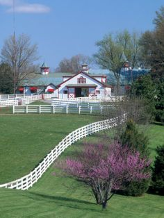 Calumet Farm in Lexington, KY. Calumet is probably Kentucky's most recognizable farm, because of its distinctive green roofs and red trim. Calumet is located on US near Bluegrass Airport and Keeneland Racetrack. Horse Stables, Horse Barns, Old Barns, Horses, Dream Stables, Kentucky Horse Farms, Louisville Kentucky, Kentucky Derby, Calumet Farm