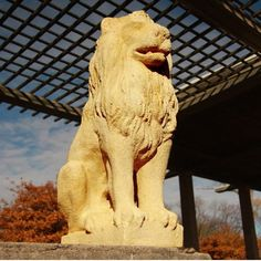Guard Lion Outdoor Garden Statue by Orlandi Statuary - Faux Concrete-FS8689