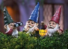Set Of 3 Peeping Gnomes Garden Statues by Winston Brands by Collections, Woodland Creatures, Mythical Creatures, Landscaping With Fountains, Gnome Village, Funny Gnomes, Modern Garden Design, Landscape Design, Gnome House, Collections Etc