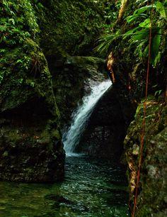 "the cozy ""dernier falls"" falls - Dominica"