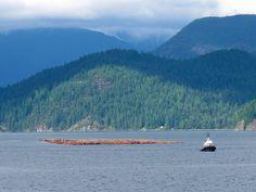 Tug boat on the way to the Sunshine Coast, BC.