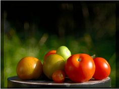 8 Reasons To Let Your Stories Ripen