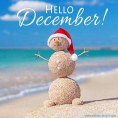 Hello #December! #sandbridge #vabeach #siebert Siebert Realty - The Beach People Sandbridge Beach, Virginia Beach, VA
