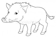 Cartoon animal - boar - isolated - coloring page Colouring Pages, Adult Coloring Pages, Coloring Books, Line Illustration, Doodle Art, Art Drawings, Beast, Creatures, Cartoon