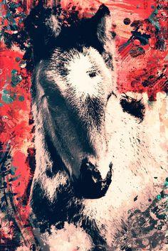 Nieuw in mijn Werk aan de Muur shop: Vintage abstract portret van een paard