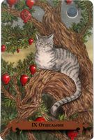 The Hermit - Mystical Cats Tarot by Lunaea Weatherstone, Mickie Mueller Oracle Tarot, Major Arcana, Tarot Cards, Cat Art, Mythology, Cats And Kittens, Mystic, Native American, Kitty