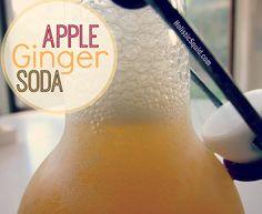 Apple Ginger Soda - Holistic Squid