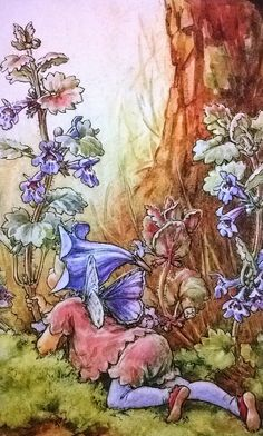 Cicely Mary Barker A fairy and Ground Ivy (Glechoma hederacea)