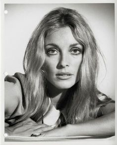 Sharon Tate is listed (or ranked) 50 on the list Cute Babies Who Grew Up to Be M. Sharon Tate is listed (or ranked) 50 on the list Cute Babies Who Grew Up to Be Movie Stars, Celebrity Baby Pictures, Celebrity List, Celebrity Babies, Celebrity Style, Sharon Tate, Steve Mcqueen, Brad Pitt, Best Beauty Tips, Beauty Hacks