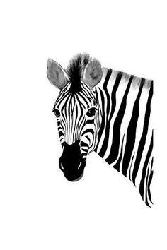 Art Print: Zack a Zebra by Romona Murdock : Zebra Drawing, Zebra Painting, Zebra Art, Animal Paintings, Animal Drawings, Zebra Illustration, African Animals, Jungle Animals, Canvas Art