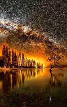 A lonely tree 🌳under the Milky Way in Wanaka, New Zealand by Mike MacKinven – Expose Nature Beautiful World, Beautiful Images, Nature Pictures, Cool Pictures, Amazing Photos, Heaven Pictures, Landscape Photography, Nature Photography, Sunrise Photography