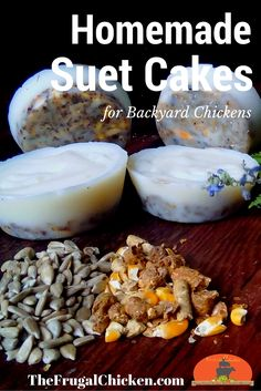 Homemade suet cakes for chickens take less than 15 minutes to craft (and just pennies), but your hens will devour them! Organic, non-GMO DIY treats for reducing bad behaviors and boosting their heath. Yum!