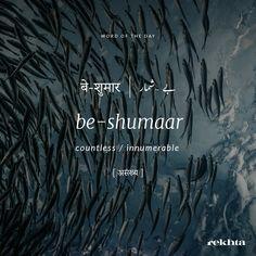 Urdu Words With Meaning, Hindi Words, Urdu Love Words, Unusual Words, Rare Words, Poetic Words, Good Vocabulary Words, Dictionary Words, Magic Words