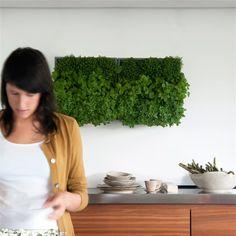 D&M Depot Karoo Verticale Plantenbak kopen? Bestel bij fonQ.nl