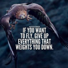 Positive Quotes : If you want to fly give up everything that weighs you down.