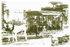 """A história do transporte em Salvador começa em meados de 1845, quando, através de Lei Municipal, foi concedido o privilégio de se estabelecer companhias de ônibus ou gôndolas (espécie de diligências puxadas por quatro animais).  Somente em 1851 foi iniciado o serviço regular em duas linhas: uma da Cidade Alta até a Barra e outra das Pedreiras até o Bonfim.  Apelidaram as gôndolas de """"maxambombas"""" e nelas só tinham ingresso """"pessoas decentemente vestidas e de cartola"""". Sobre um dos quatro…"""