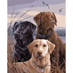 Fancy - Mary Maxim - Proud Labs Paint By Number Kit