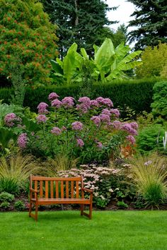 Bench, Joe Pye weed, and the hardy bananas. PowellsWood -Private Garden