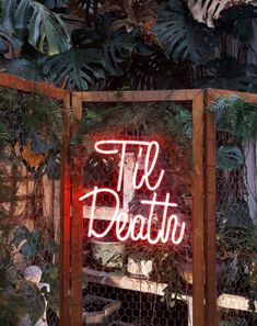 Til Death neon sign in a lush tropical background