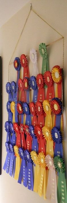 Custom Equestrian Hanging Ribbon Rack – 10 ROWS – holds up to 90 ribbons Custom Equestrian Hanging Ribbon Rack 10 ROWS by jessicacoates Horse Ribbon Display, Show Ribbon Display, Horse Show Ribbons, Trophy Display, Award Display, Blanket Rack, Show Cattle, Equestrian Decor, Horse Crafts