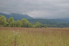 I love to visit Cades Cove in the Great Smoky Mountains