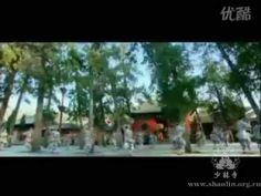 【美丽中国】走遍中国之少林寺【Beautiful China】Across China-Shaolin Temple #SanyaHeartstoHearts