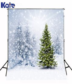 Winter Snow Backdrops Background Cedar Photo by katehome2014