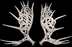 Shane Wilson Carved Moose Antlers Moose Antlers, Skull Decor, Animal Skulls, Tiger, Medium Art, Swirls, Horns, Illustrators, Carving