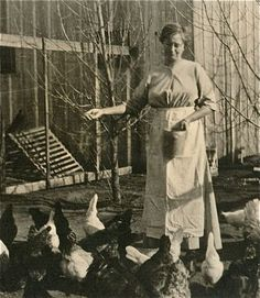 Vintage Photo of a Lady Feeding Her Chickens