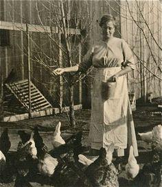 Lady Feeding Her Chickens