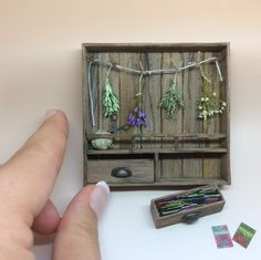 Dried Herbs in 1:1