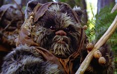 From the Ewok folktales and fables Legion Characters, Star Wars Canon, Sci Fi Tv, Ewok, S Star, Marvel Comics, Fantasy, Starwars, Animals