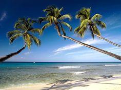 Kerala Beaches.