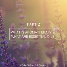 The third part of our new blog series by Judith White is up on Spread the Light! Click here to read about her thoughts on aromatherapy and essential oils http://www.koraorganics.com/blog/key-ingredients xxx KORA Organics