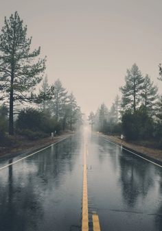 Rainy misty road (no location given) by veeterzy☔️ cr.