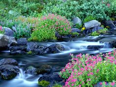 Beautiful World | Beautiful Rivers of the World Pictures 1600 x 1200 - Photo 1 of 33 ...