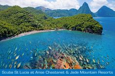 Scuba St.Lucia and Anse Chastanet - Caribbean Scuba Diving Resort - http://www.diveguide.com/forums/showthread.php?20854-Scuba-St-Lucia-and-Anse-Chastanet-Caribbean-Scuba-Diving-Resort