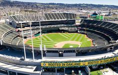 Oakland Coliseum, Mlb Stadiums, San Francisco Chronicle, East Bay, Interesting News, Baseball Field, Google Images, Basketball Court, California
