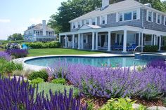 Houzz...Love the lavendar around the pool.