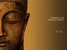 Intelligentie is niet hetzelfde als wijsheid. / Lao Tzu