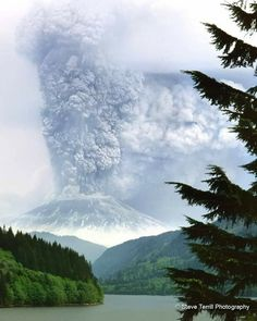 Mt St Helens during the May 1980 erupion from Yale Lake Washington_Steve Terrill Photography All Nature, Amazing Nature, Lava, Erupting Volcano, Saint Helens, Take Better Photos, Great Pictures, Natural Disasters, Mother Nature
