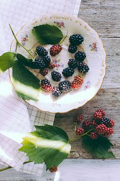 Blackberries from Vienna Woods