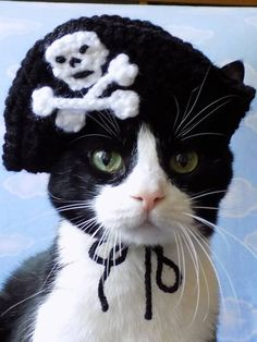 Chaircat Mao's Holiday Hats 2017 - CROCHET - Last October I began crocheting holiday hats for our kitty, Chair. Crazy Cat Lady, Crazy Cats, I Love Cats, Cool Cats, Cat Accessories, Cat Hat, Pet Costumes, Cat Crafts, Black Veil Brides